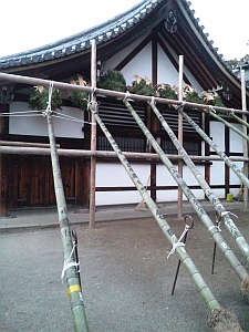 東大寺 お松明