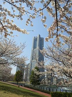 横浜2012春